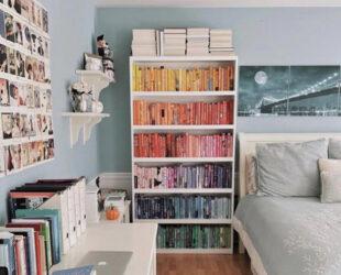 How Do You Organize Your Bookshelves?